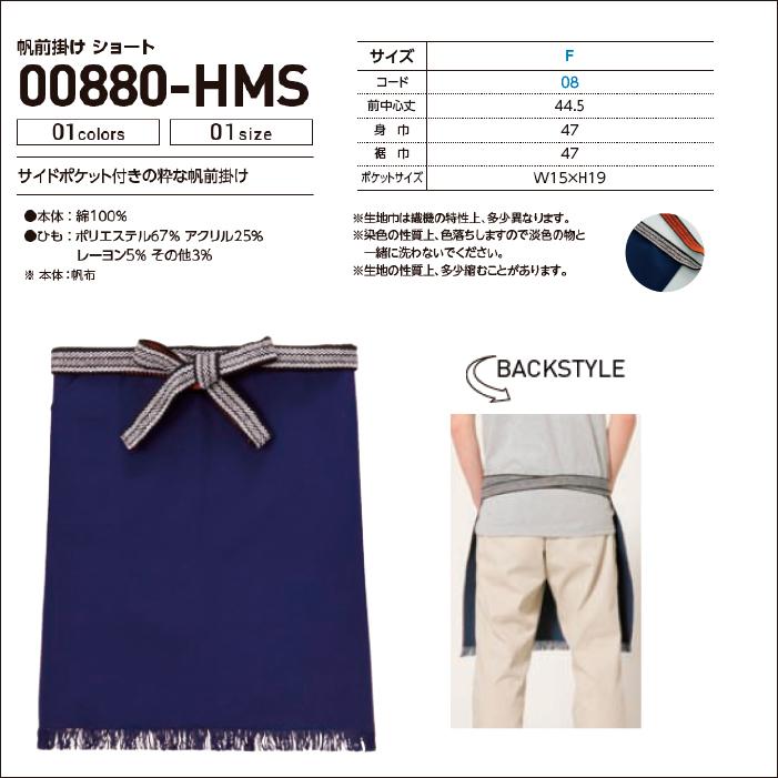 00880-HMS