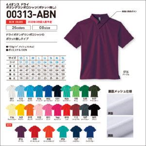 00313-ABN